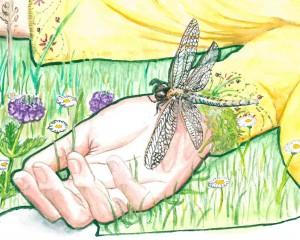 02-Hand und Libelle