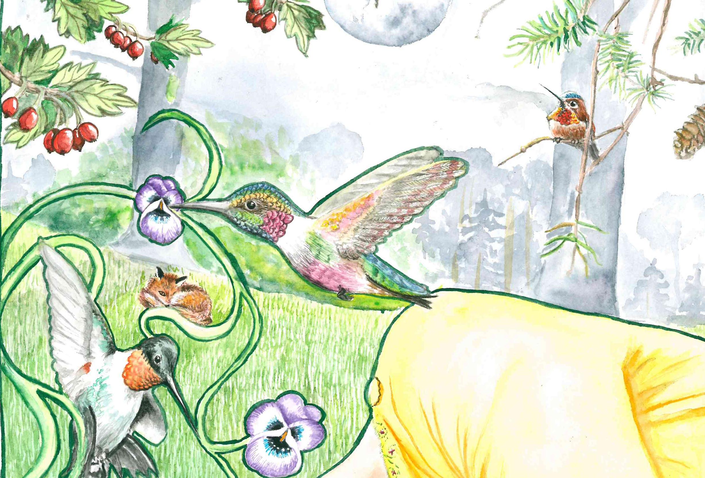 02-Kolibris